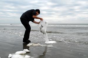 Motoi yamamoto return to the sea ocean