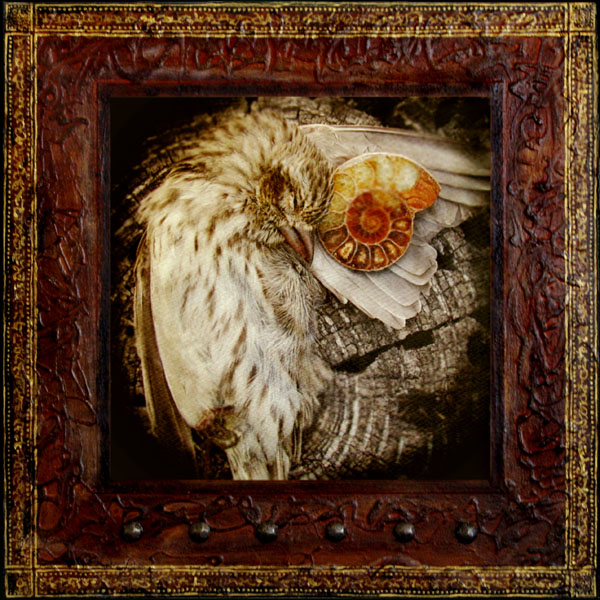 Above Me | Mixed Media Photo Painting, Wax on Wood Panel | Yuko Ishii