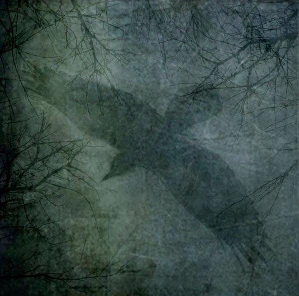 Courage |  Mixed Media Photography, Wax on Wood Panel | Yuko Ishii