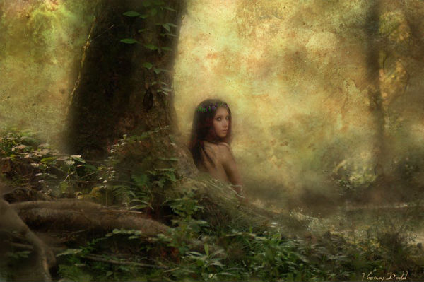 The Nymph | Thomas Dodd | 2009